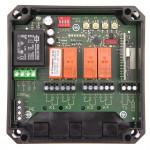 Receptor DICKERT-E25Q-868A400