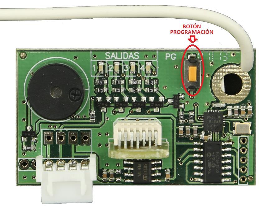 Placa receptora clemsa R 248